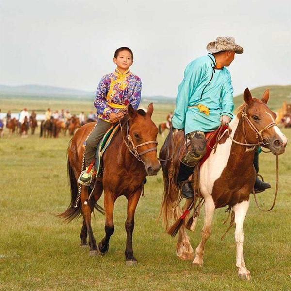 Cao ngựa Mông Cổ